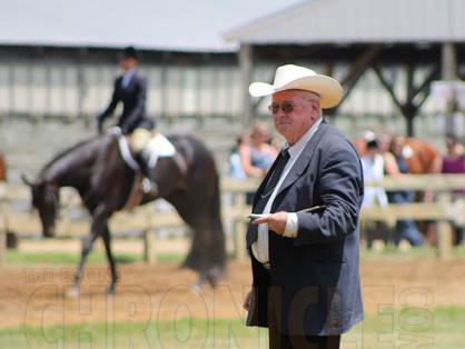 """Today's Tom Powers """"Happy Hour"""" Sale Horse Presentation Hopes to Connect Buyers and Sellers in a Unique, New Way"""