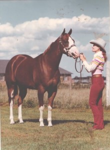 """Caption: """"The sorrel overo mare in the pictures is a 1971 model by Two Eyed Jack and out of a Quarter Horse mare named Sailor's Maiden. We bought her from Darol Dickinson (the artist and photographer from Colorado). This was the only Sailor's Maiden offspring registered Paint, although I understand Greg Whalen bought her and raised several AQHA champions out of her."""" Photo courtesy of Clea Bobbitt, circa 1974."""