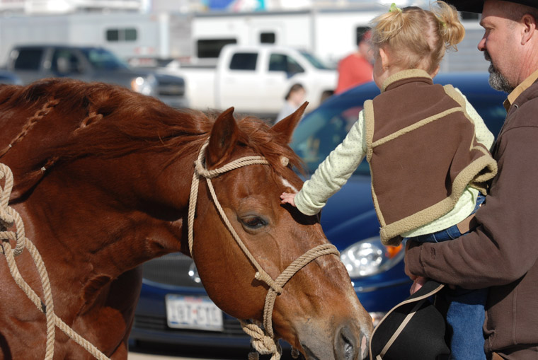 Behind The Scenes Photos at 2014 Fort Worth Stock Show and Rodeo