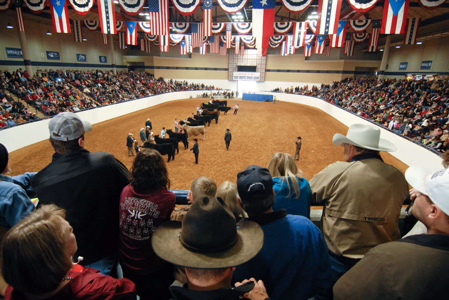 Behind The Scenes Photos At 2014 Fort Worth Stock Show And