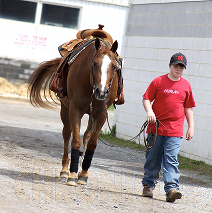 Youth Equestrians Earn Scholarships For Involvement Outside of Show Arena