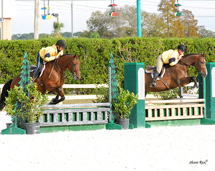 "New ""Tandem/Synchronized"" $1,000 Hunter Pairings Class a Huge Hit Among Competitors at 2014 Fl. Gulf Coast"