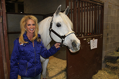 Diary of an Equine NFL Mascot: Thunder's Journey to the Super Bowl