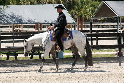 Nearly 30 Years and Still Going Strong: Florida Super 8 Appaloosa Show Circuit