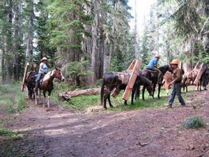 Image courtesy of Back Country Horsemen of America.