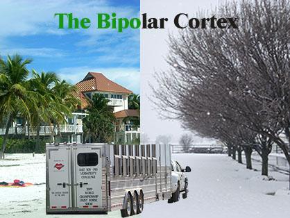 The Bipolar Cortex: Concerns When Trailering Horses Through Various Climates