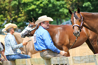 Nicely Turned Out or Sneakers With Spurs? Why Image Matters to Your Horse Business Brand