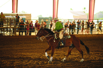 Can Your Trail Horse Do This? Extreme Mustang Makeover Trail Challenge