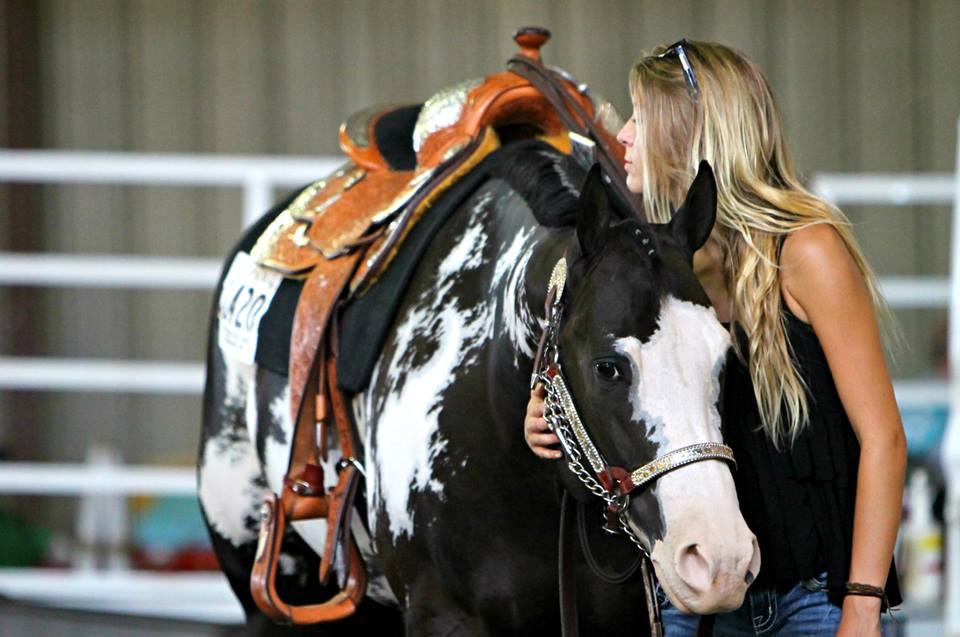 Day 9 Results and Photos From 2014 Pinto World Show