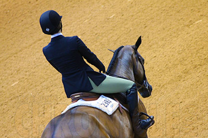 Ill-Fitting Saddles Are Culprits For Horse AND Rider Back Pain, New Study Suggests