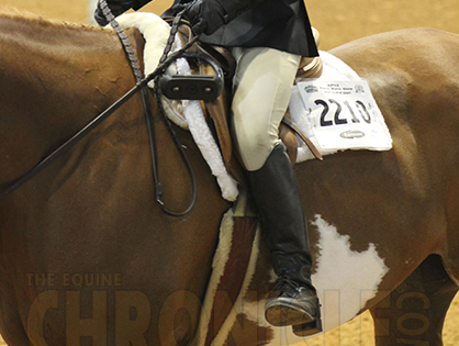 """Youth World Prep: """"Riders, Drop Your Stirrups"""""""
