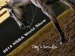 Day 2 Results From 2014 NSBA World Show