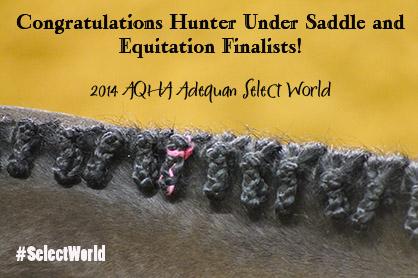Congratulations 2014 AQHA Adequan Select World Show Hunter Under Saddle and Equitation Finalists!