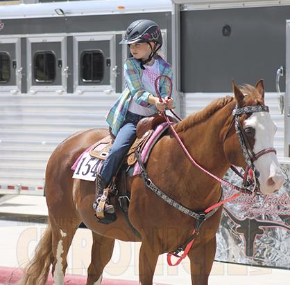 Lasix for barrel horses