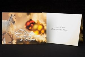 Order Christmas Cards Featuring Your Favorite Breed of Horse!