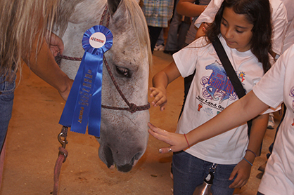 Kids Will Get the Chance to Learn About Wild Horses at Wildfire Horse Camp This Weekend in Fort Worth, TX.