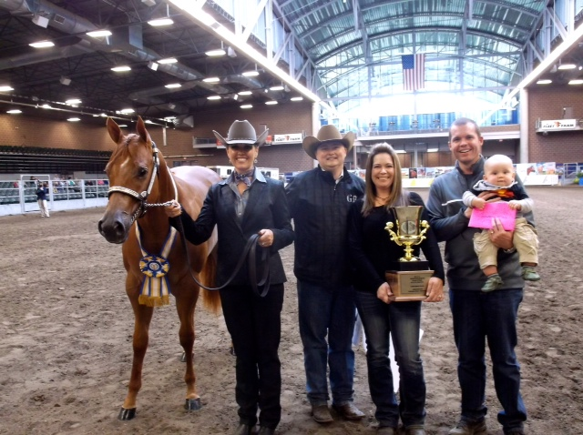 Latest Results and Photos From 2014 Breeders Halter Futurity/National Halter Championship
