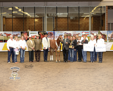 The 2014 Breeders' Halter Futurity – The Future Has Arrived