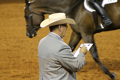 Getting a Jumpstart in Horse Judging