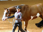Day 1-3 Photos at 2014 APHA World Show