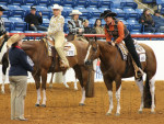 Day 3-7 Wrap-Up Photos From 2014 APHA World Show