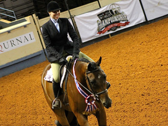 Beth Case and Look N Hott Are AQHA Senior Hunter Under Saddle World Champions
