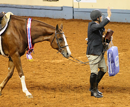 Something is. amateur aqha jumping classes casually come