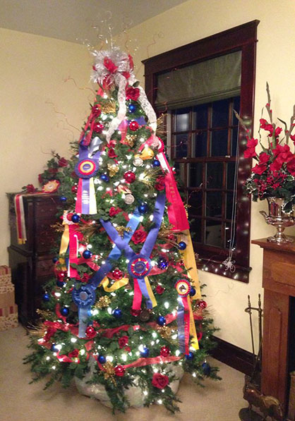 Christmas Decorations For Your Horse : Ec holiday horse photo of the day an equestrian christmas