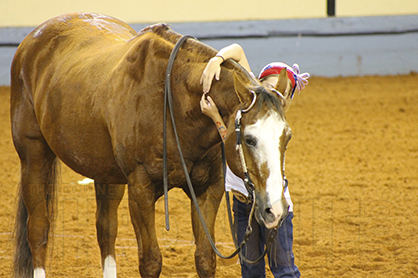 Hug Your Horse Today on National Hug Day!