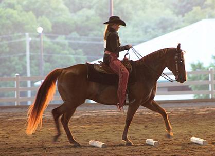 GEORGIA QUARTER HORSE ASSOCIATION