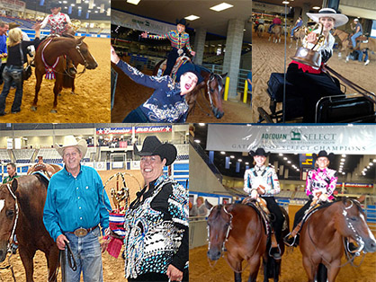 Updated Schedule For 2019 AQHA Select World