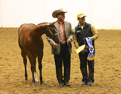 First Halter Wins Of The Morning At 2015 Qh Congress Go To