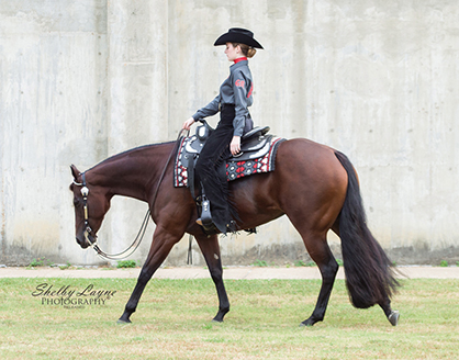 Sneak Peak – New Horse & Rider Teams for 2016