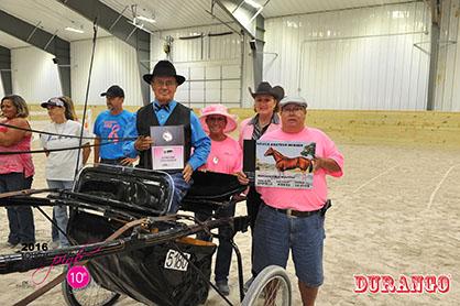 Sue Mulford Memorial Pleasure Driving Champion