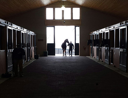 How to Reopen Your Barn After Quarantine