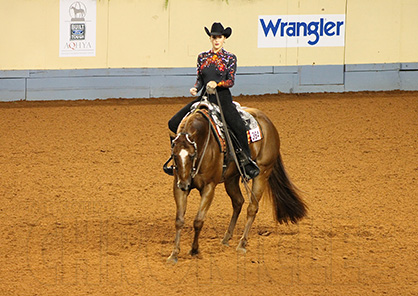 AQHA Releases Extensive List of Newly Approved Animal Welfare Recommendations, Including AQHA Horse Show Integrity Team to be Deployed at World Shows