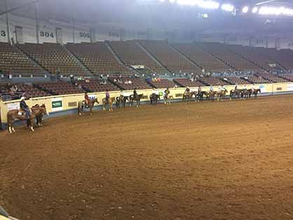 Blog #3 With Austin, Dailey, and Caroline at AQHA L1 Championship OKC ...