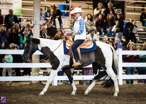 New Owner Taking the Reins of Equine Affaire