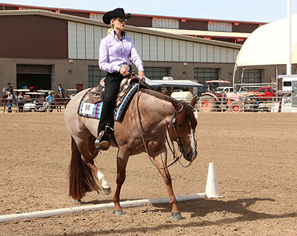 Special Awards on Tap For L1 Exhibitors at Arizona Fall Championship