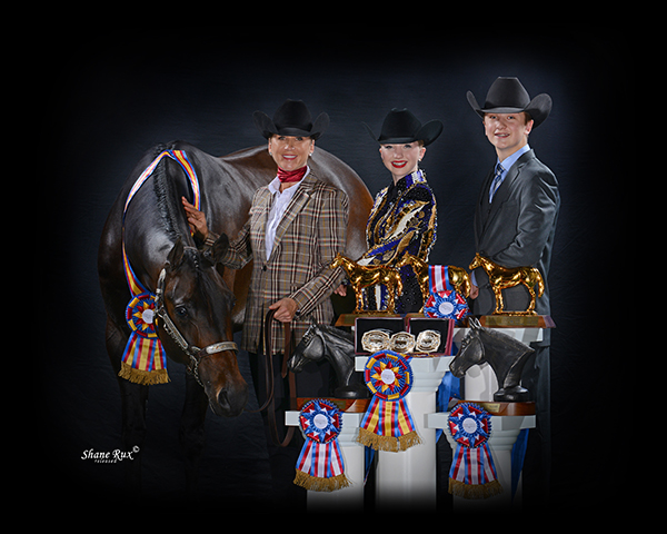 Betta Believe It Helps Three Family Members Win Gold Trophies at AQHA L1 Championship Central