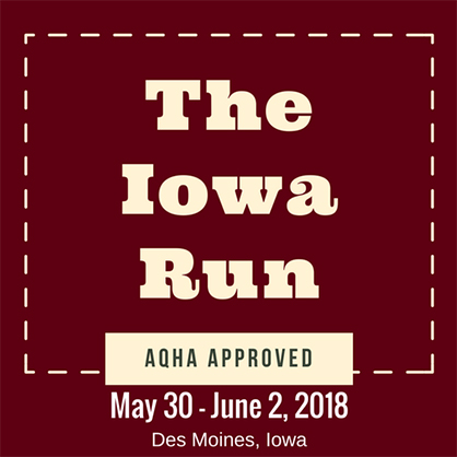 The Equine Chronicle Green4Green $500 Circuit Champions Coming to The Iowa Run