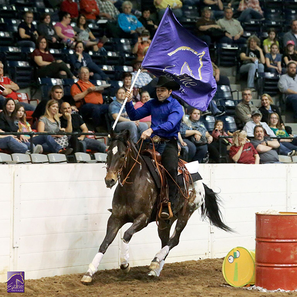 """Experience the """"Affaire"""" of a Lifetime:  Fall in Love with Horses at Equine Affaire"""