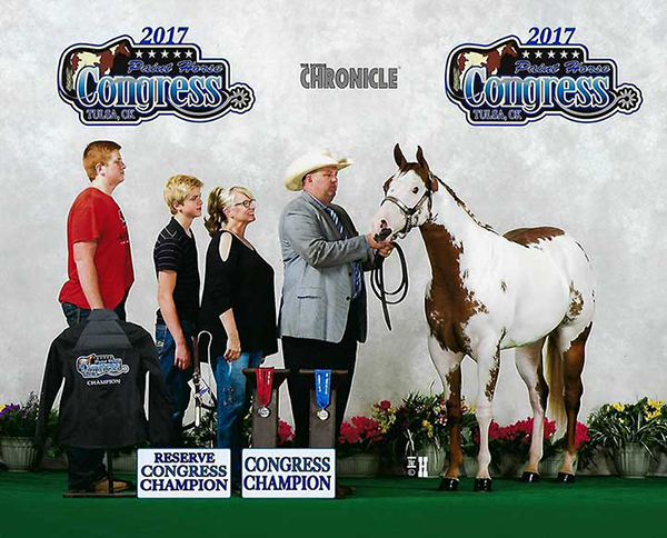Bidding Closes May 2nd in May Internet Horse Auctions