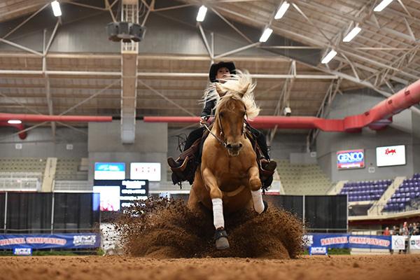 Ncea Announces Riders For 2018 Nrha Collegiate Reining