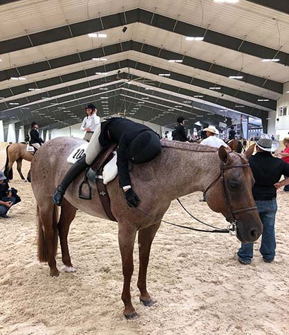 EC Photo of the Day- AQHA Youth World Prep Takes Its Toll…