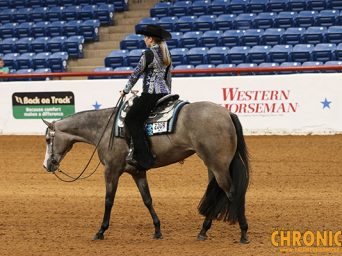 Color Choice Futurity Kicks Off First Leg at ABRA World Championship Show Next Week