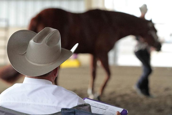 Clinicians Announced For 2018 AQHA Youth World Show