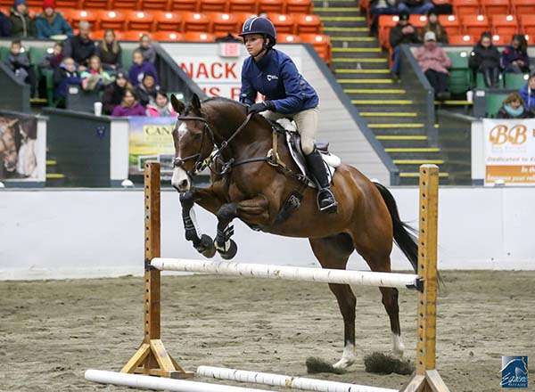 Education, Entertainment, and Everything Equine Coming to Equine Affaire in Massachusetts