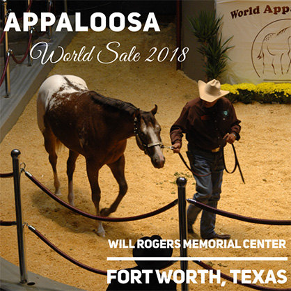 Save the Date For Appaloosa World Show Sale