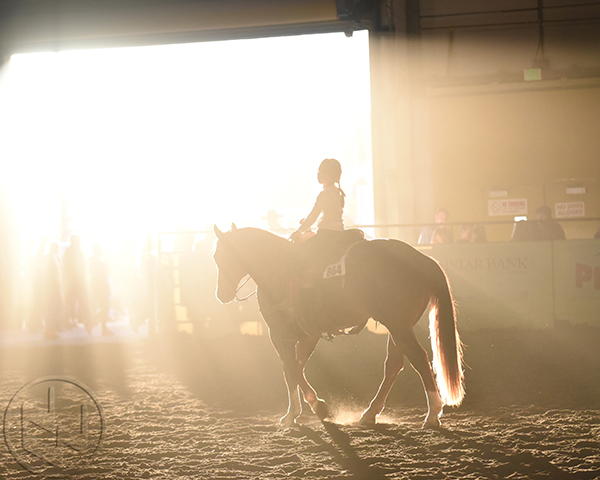National Western Stock Show Creates Youth Ranch Horse Mentor Matchup